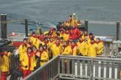 Exkurze pozorování velryb